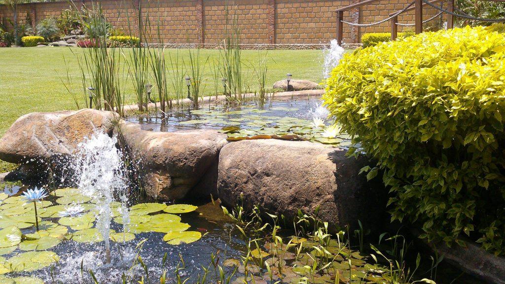 Jardín de Eventos Jaku